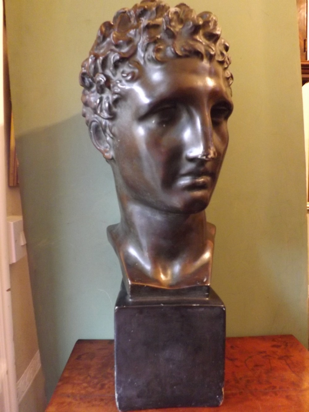 late c19thearly c20th bronzed plaster library bust