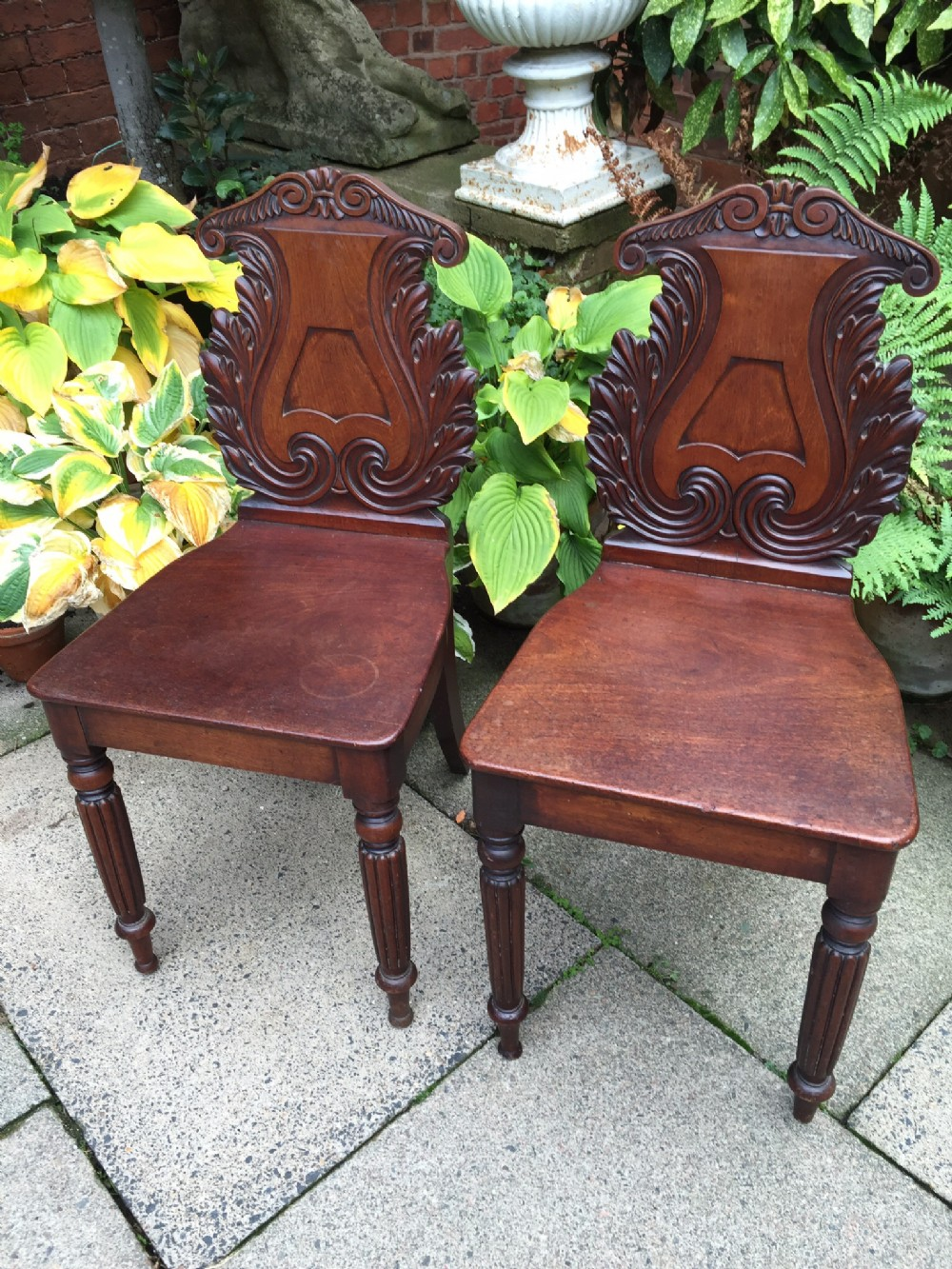 pair of early c19th george iv period carved mahogany hall chairs